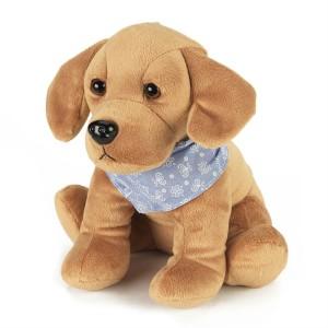 Labrador Alfie